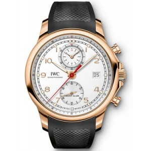 Copy IWC Portugieser Watch IW390501