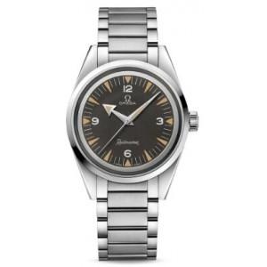 Copy Omega Seamaster Aqua Terra 150M RailMaster Watch 220.10.38.20.01.002